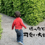 分かれ道に立つ男の子