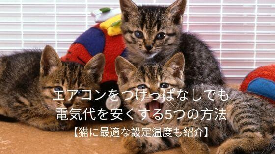 猫の電気代を節約
